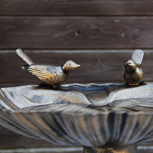 Vogeltränke VGT4 Vogelbad Vogel Tränke Bad mit zwei Vögeln auf der Wasserschale - 3