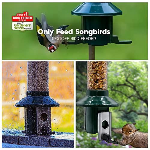 Eichhörnchensichere Vogelfutterstation Roamwild Pest-Off-Futterstation für Erdnüsse - 2