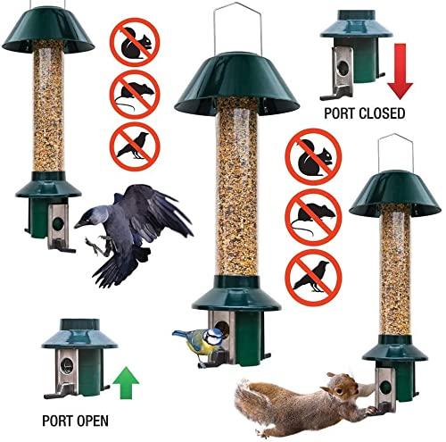 Eichhörnchensichere Vogelfutterstation Roamwild Pest-Off-Futterstation für Erdnüsse - 3