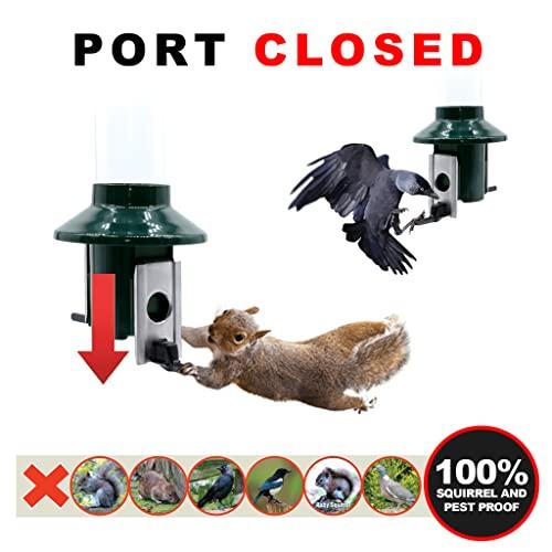 Eichhörnchensichere Vogelfutterstation Roamwild Pest-Off-Futterstation für Erdnüsse - 5