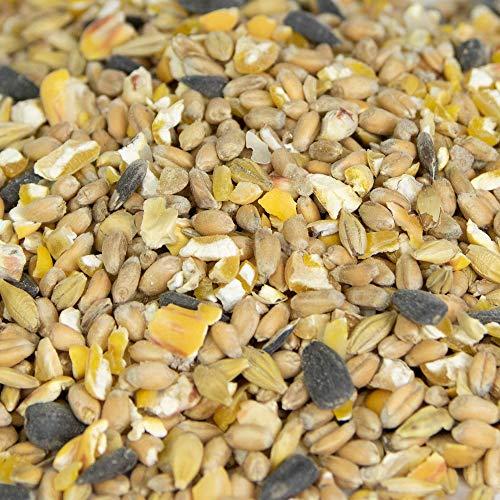 Bio Geflügelkörnermix 30 kg, 100 % Bio, Gen-Frei *Aktionspreis*