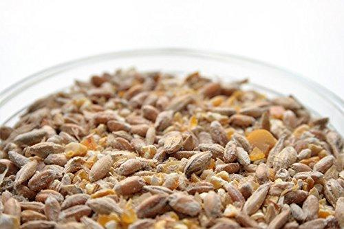 20 Kilo bio Hühnerfutter und Wachtelfutter Körnermischung - 2