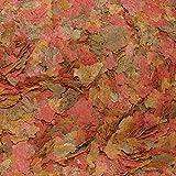 Söll 16139 Organix Flakes – Hauptfutter für Zierfische – Aquariumfutter – Zierfischfutter – Flockenfutter – 1 L - 5