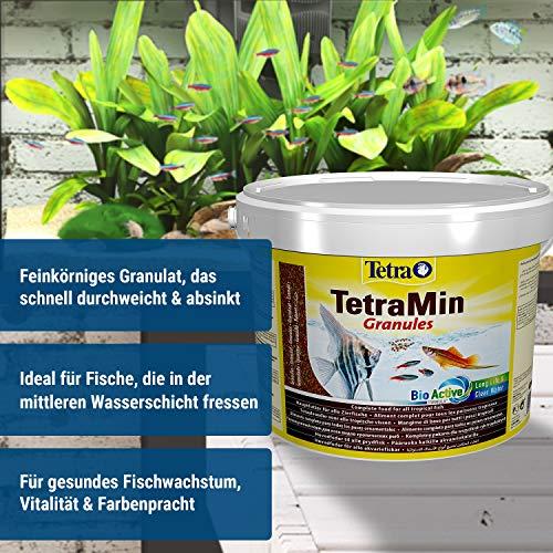 TetraMin Granules (Hauptfutter in Granulatform für alle kleinen Zierfische wie z.B. Salmler und Barben), 10 Liter Eimer - 2