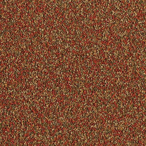 TetraMin Granules (Hauptfutter in Granulatform für alle kleinen Zierfische wie z.B. Salmler und Barben), 10 Liter Eimer - 3