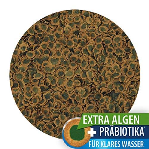 Tetra Pro Algae Premiumfutter (für alle tropischen Zierfische, mit Algenkonzentrat zur Verbesserung der Widerstandskraft, Vitaminstabilität und hoher Nährwert, Spirulina-Alge), 250 ml Dose - 3
