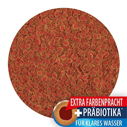 Tetra Pro Colour Premiumfutter (für alle tropischen Zierfische, Farbkonzentrat für hervorragende natürliche Farbausprägung, hoher Gehalt an Carotinoiden für farbverstärkende Wirkung), 250 ml Dose - 3