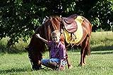 Naturendo Pferde Leinöl frisches, 5 Literkaltgepresstes Lein Öl aus 100% natürlicher Leinsaat - 6