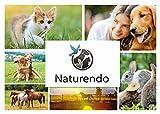 Naturendo Pferde Leinöl frisches, 5 Literkaltgepresstes Lein Öl aus 100% natürlicher Leinsaat - 8