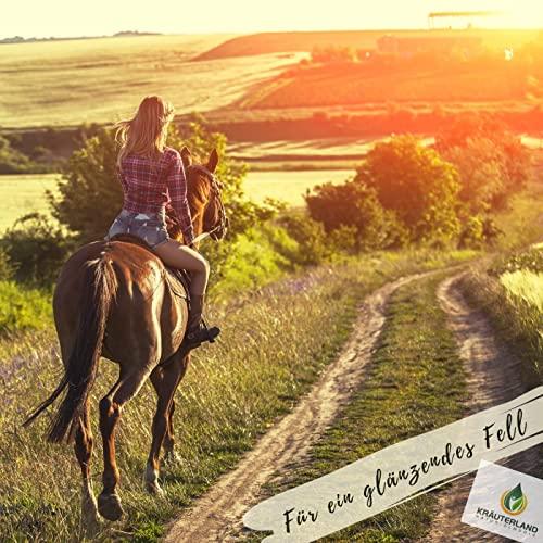Schwarzkümmelöl 1000ml ungefiltert für Pferde in Dosierflasche *** mühlenfrisch direkt vom Hersteller Kräuterland Natur-Ölmühle *** 100% naturrein *** - 6