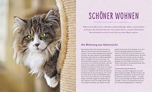 Wohnungskatzen: Wohlfühl-Basics für kleine Tiger - 5