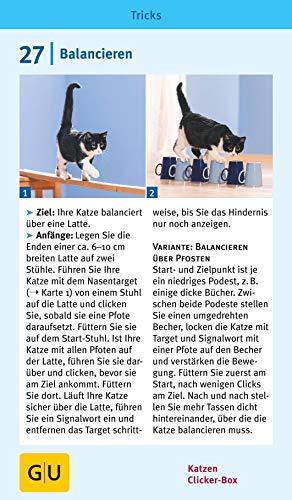 Katzen-Clicker-Box: Plus Clicker für  sofortigen Spielspaß (GU Tier-Box) - 10
