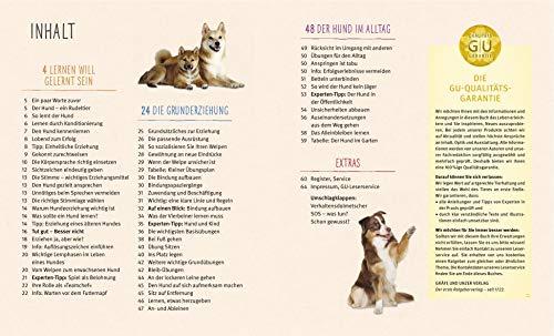 Hundeerziehung: Gut erzogen – fit für den Alltag - 4