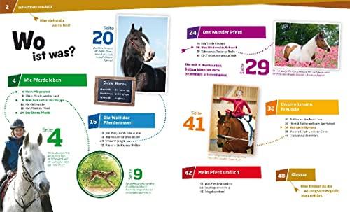 WAS IST WAS Band 27 Pferde. Von frechen Fohlen und wilden Mustangs (WAS IST WAS Sachbuch, Band 27) - 3