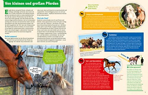 WAS IST WAS Pferde und Ponys: Reiten, Zucht und Pferdesprache (WAS IST WAS Edition) - 2