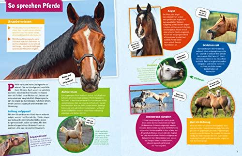 WAS IST WAS Pferde und Ponys: Reiten, Zucht und Pferdesprache (WAS IST WAS Edition) - 7