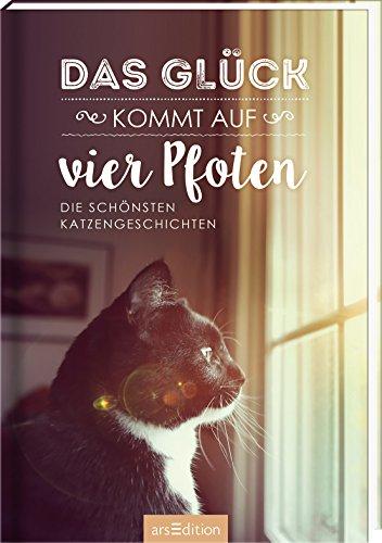 Das Glück kommt auf vier Pfoten: Die schönsten Katzengeschichten