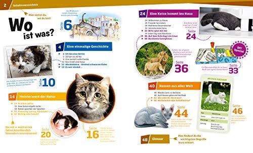 WAS IST WAS Band 59 Katzen. Flinke Jäger auf Samtpfoten (WAS IST WAS Sachbuch, Band 59) - 3