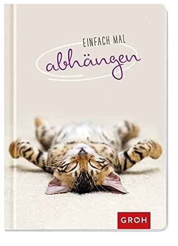Einfach mal abhängen: Entspannung für Katzenfreunde