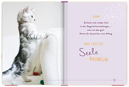 Einfach mal abhängen: Entspannung für Katzenfreunde - 4