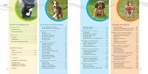 Welpen-Erziehung: Der 8-Wochen-Trainingsplan für Welpen. Plus Junghund-Training vom 5. bis 12. Monat (GU Tier Spezial) - 4