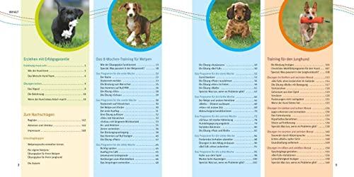 Welpen-Erziehung: Der 8-Wochen-Trainingsplan für Welpen. Plus Junghund-Training vom 5. bis 12. Monat (GU Tier Spezial) - 7