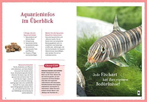 Faszinierendes Aquarium: So fühlen sich die Fische wohl. Mit Eltern-Tipps (GU Mein Heimtier) - 4