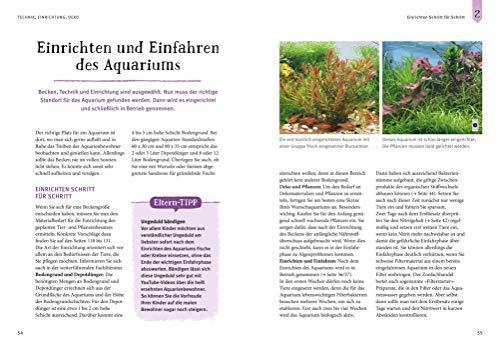 Faszinierendes Aquarium: So fühlen sich die Fische wohl. Mit Eltern-Tipps (GU Mein Heimtier) - 8