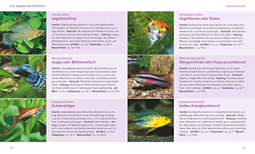 Das Aquarium: Bunter Mikrokosmos im Becken (GU Tierratgeber) - 6