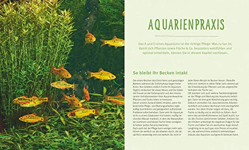 Das Aquarium: Bunter Mikrokosmos im Becken (GU Tierratgeber) - 7