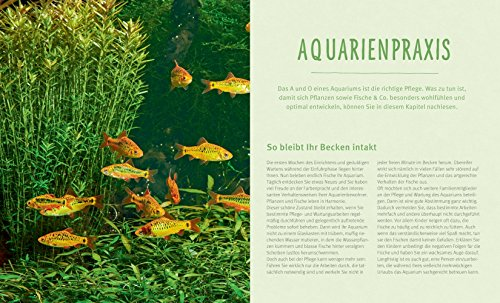Das Aquarium: Bunter Mikrokosmos im Becken (GU Tierratgeber) - 5