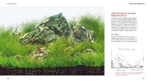 Aquascaping: Aquarienlandschaften gestalten (GU Tier Spezial) - 7