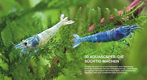 Aquascaping: Aquarienlandschaften gestalten (GU Tier Spezial) - 8