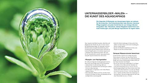 Aquascaping: Aquarienlandschaften gestalten (GU Tier Spezial) - 2