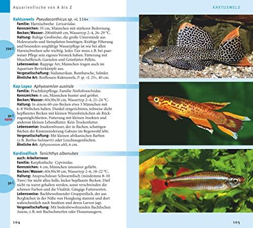 Aquarienfische von A bis Z: Über 300 beliebte Süßwasserfische. Mit schönen Kleinstfischen fürs Nano. (GU Der große Kompass) - 4
