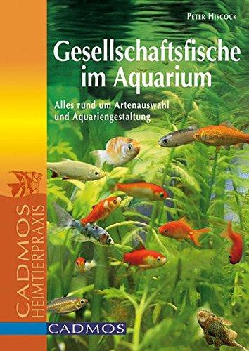 Gesellschaftsfische im Aquarium: Alles rund um Artenauswahl und Aquariengestaltung (Cadmos Aquaristik)