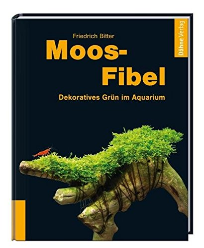 Moos-Fibel: Dekoratives Grün im Aquarium