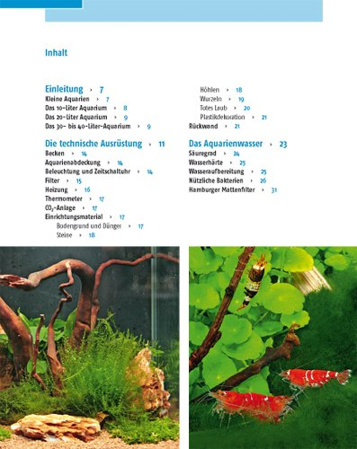 Kleine Aquarien: Extra: Nano-Aquarien - 12