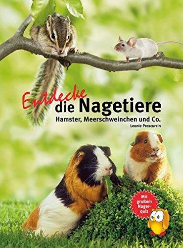 Entdecke die Nagetiere: Hamster, Meerschweinchen & Co. (Entdecke - Die Reihe mit der Eule / Kindersachbuchreihe)