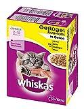 Whiskas Junior Katzenfutter Geflügelauswahl in Gelee, 48 Beutel (4 x 12 x 100 g) - 4