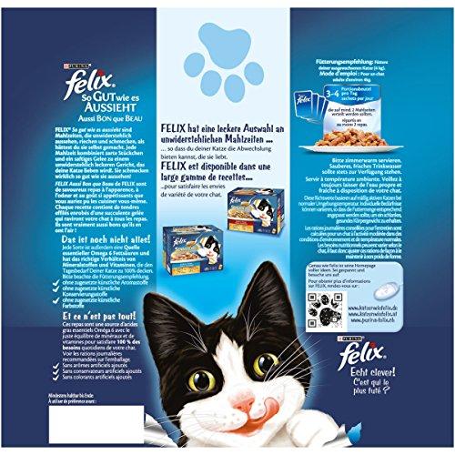 Felix So gut wie es aussieht Katzenfutter Fleisch Mix4er Pack, (4 x 24 x 100 g) Beutel - 2