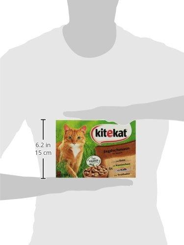 Kitekat Katzenfutter Jagdschmaus in Soße, 48 Beutel (2 x 24 x 100 g) - 4