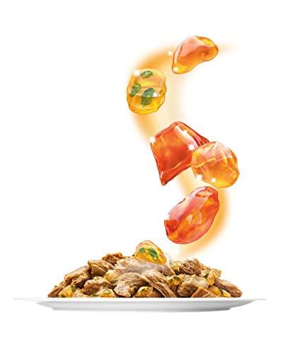Sensations Gelees Geschmacksvielfalt vom Land4er Pack, (4 x 24 x 100 g) Beutel - 6