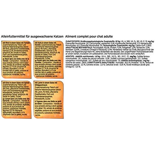 Sensations Gelees Geschmacksvielfalt vom Land4er Pack, (4 x 24 x 100 g) Beutel - 5