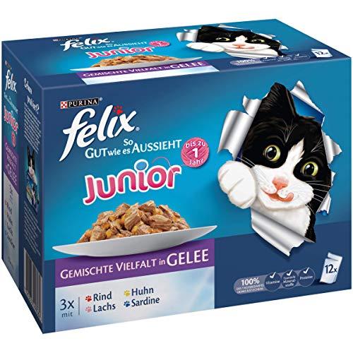 Felix So gut wie es aussieht Junior Katzenfutter Rind, Huhn, Lachs, Sardine, 6er Pack (6 x 12 x 100 g) Beutel