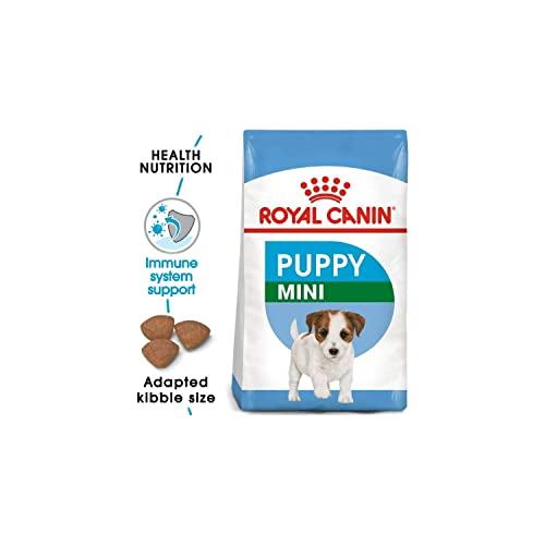 Royal Canin Hundefutter Mini Junior 33, 2 kg, 1er Pack (1 x 2 kg) - 2