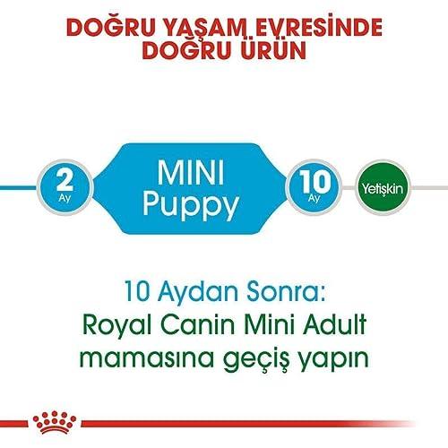Royal Canin Hundefutter Mini Junior 33, 2 kg, 1er Pack (1 x 2 kg) - 6