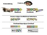 JBL 40296 Hauptfutter Mix für alle Teichfische, Futterflocken, Sticks, Krebstiere PondVario, 1er Pack (1 x 5.5 l) - 5