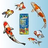 JBL 40148 Rundumernährung für alle Teichfische, PondSticks 4 in 1, 1er Pack (1 x 31.5 l) - 3