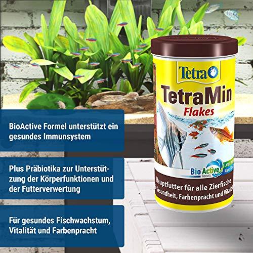 TetraMin (Hauptfutter für alle Zierfische in Flockenform, für ein langes und gesundes Fischleben und klares Wasser, plus Präbiotika für verbesserte Körperfunktionen und Futterverwertung), 1 Liter Dose - 3